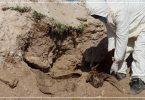 دفاع مدني مقبرة جماعية جثث