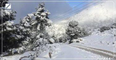 ثلج الثلج